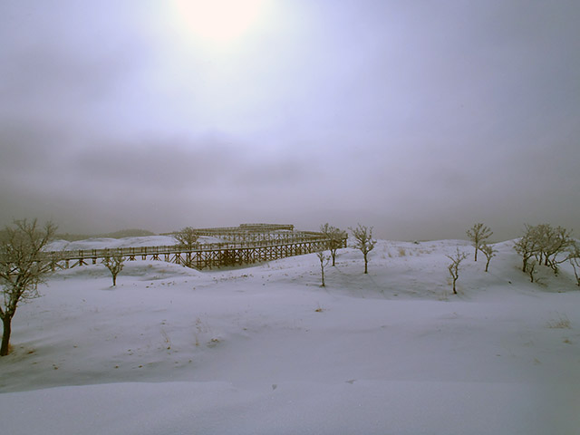 知床五湖 高架木道