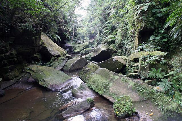 ピナイサーラの滝上の上流