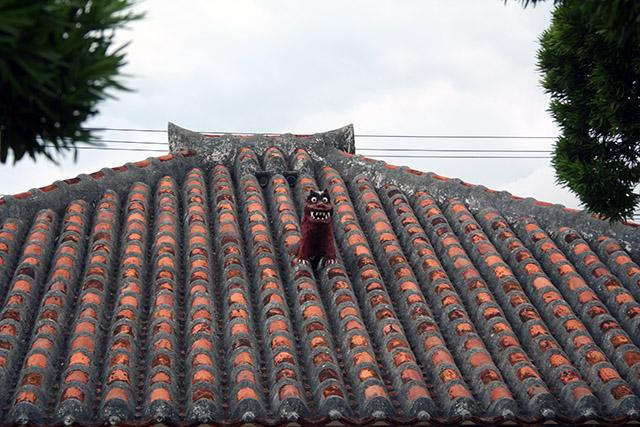 竹富島の家屋の屋根