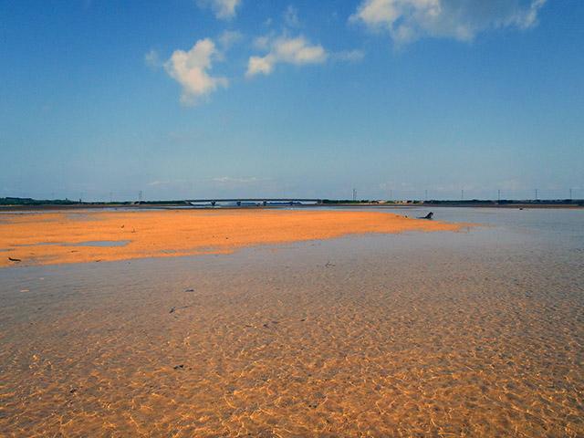 マーレ川、ヒナイ川河口付近の海岸