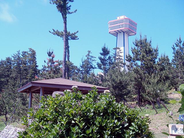 荒磯遊歩道から東尋坊タワー