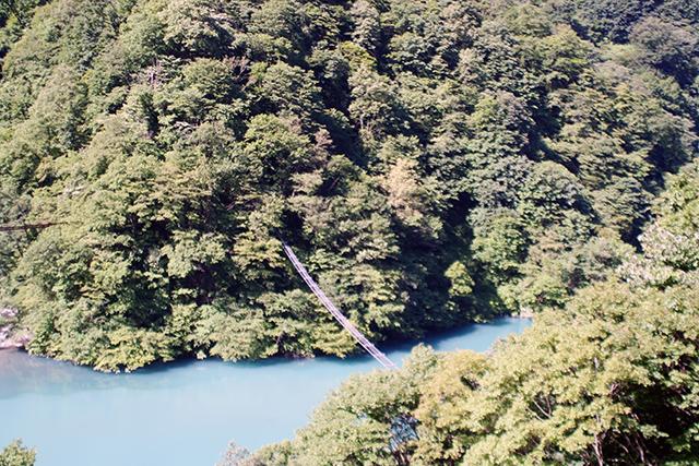 うなづき湖 サル専用の橋