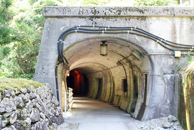 やまびこ遊歩道のトンネル