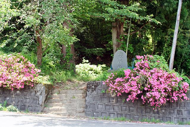 秋葉神社 入口周辺