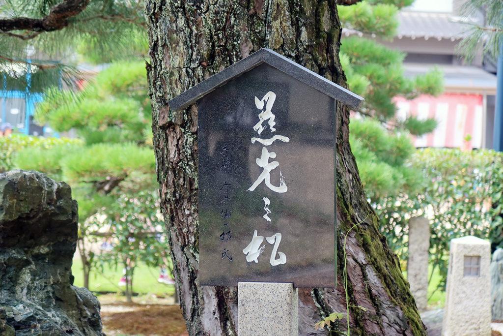 慈光の松(かな?))